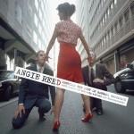 ANGIE REED- Best of Barbara Brockhaus